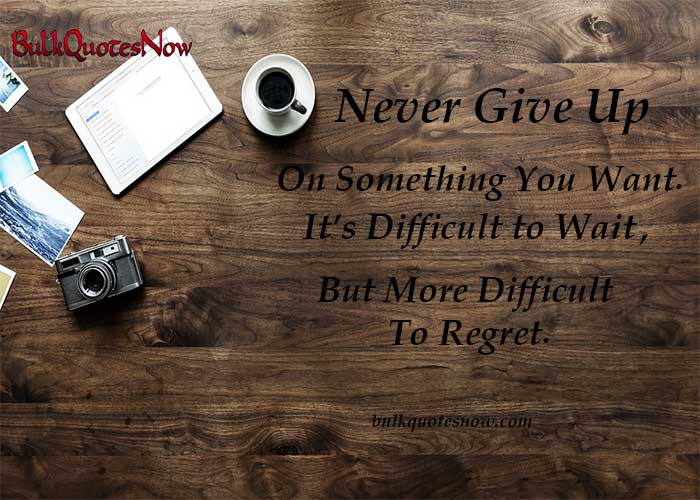 albert einstein quotes never give up