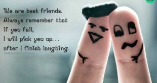 friendship-quotes-funny