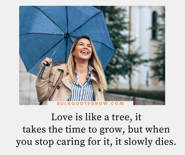 love is like a tree