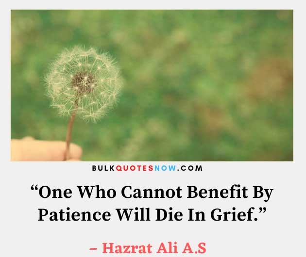 patience quotes Islam