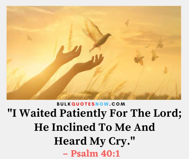 patience quotes in Bible