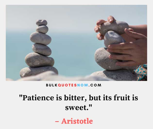 60 Best Patience Quotes – Quotes About Being Patient