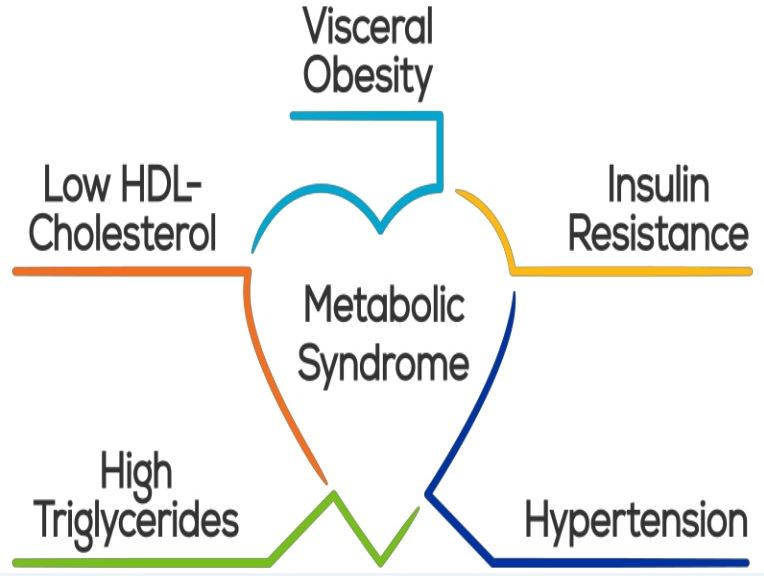 Metabolic Syndrome: Causes and Symptoms