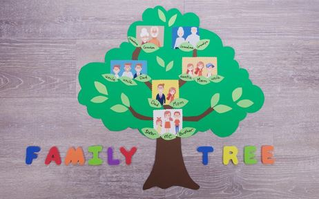 6 Tips To Create Your Family Tree Perfectly