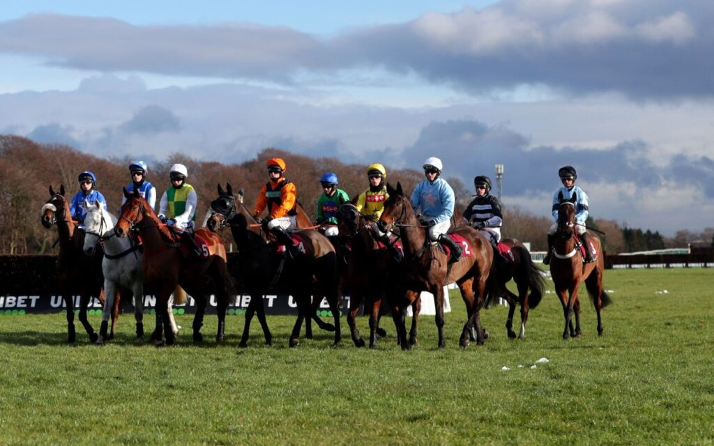 SP In Horse Racing: How Is The Value Of SP Calculated?