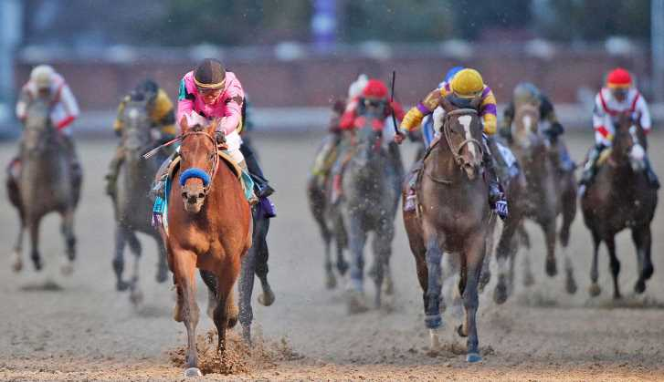 Contenders To Avoid At The Breeders' Cup